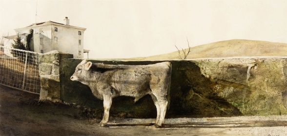 "<h5><em>Young Bull</em>, 1960 drybrush on paper, 19.75 x 41.25 in. Private Collection</h5><p>© 2016 Andrew Wyeth / Artists Rights Society (ARS), NY  <a href="" http://www.artres.com/C.aspx?VP3=ViewBox_VPage&VBID=2UN365UGNW56M&IT=ZoomImageTemplate01_VForm&IID=2UNTWASQGS14&PN=27&CT=Search&SF=0"" target=""_blank"">