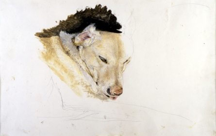 <h5><em>Nell, Study for Night Sleeper</em>, 1979 drybrush on paper, 14 x 21.25 in. Private Collection</h5><p>© 2016 Andrew Wyeth / Artists Rights Society (ARS), NY </p>