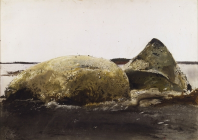 <h5><em>Sea Snails</em>, 1953 watercolor on paper, 20 x 28.125 in. Private Collection</h5><p>© 2016 Andrew Wyeth / Artists Rights Society (ARS), NY </p>