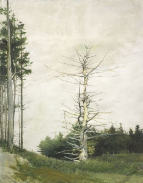 <h5><em>Crow Tree</em>, Study for Eagle Eye, 2007 watercolor on paper, 51 x 40 in. Private Collection</h5><p>© 2016 Andrew Wyeth / Artists Rights Society (ARS), NY </p>